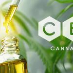 Czy warto zdecydować się na zakup oleju CBD%?